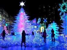 Eventi di Natale a Marina di Massa Foto
