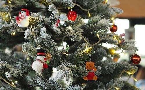 Eventi di Natale in Versilia Foto